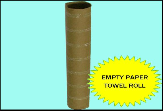 Empty Paper Towel Roll